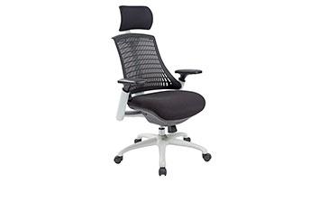 电脑椅-椅子图片-办公椅-人体工学椅-人体工学电脑椅