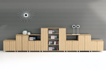 商务文件柜系列-办公档案柜-书柜
